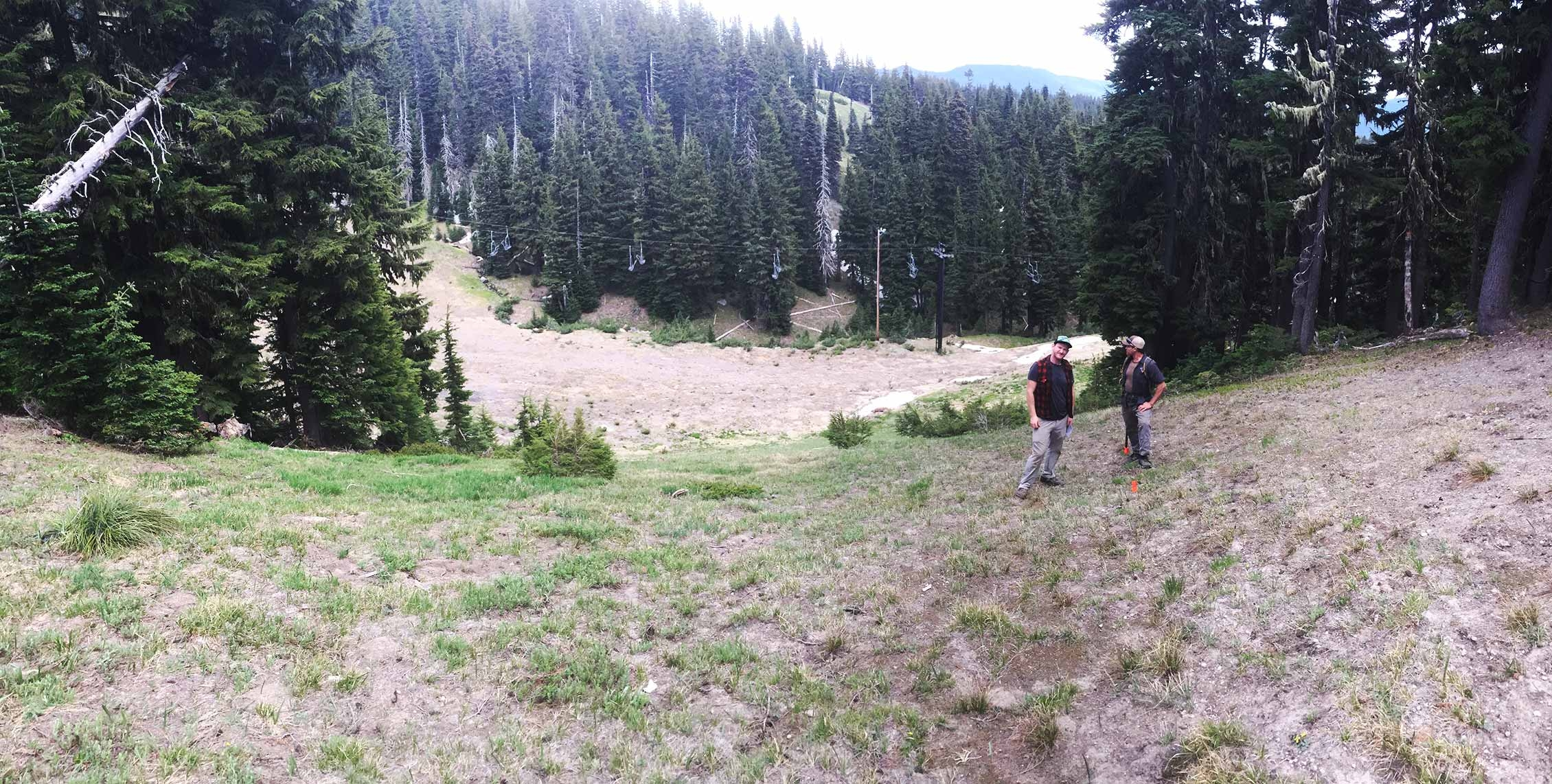 TIMBERLINE BIKE PARK PHASE 1